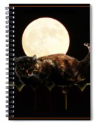 Full Moon Cat Spiral Notebook