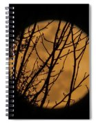Full Moon Through The Branches Spiral Notebook