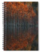 Full Of Glory - Cypress Trees In Autumn Spiral Notebook