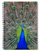 Full Spread Spiral Notebook