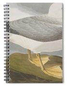 Fulmar Petrel Spiral Notebook