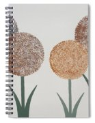 Fun Colours  3 Spiral Notebook