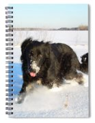 Fun In The Snow Running Spiral Notebook