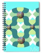 Fun Spiral Notebook