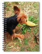 Fun On The Grass Spiral Notebook