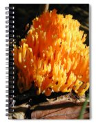 Fung1 Spiral Notebook