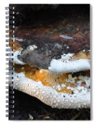 Fungi In Dew Spiral Notebook