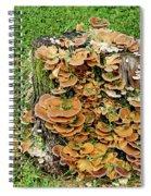 Fungus Bouquet Spiral Notebook