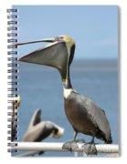 Funny Brown Pelican Spiral Notebook