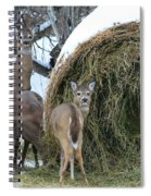 Funny Faces Spiral Notebook