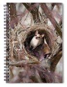 Funny Little Bird Spiral Notebook
