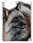 Funny Little Furry Face Spiral Notebook