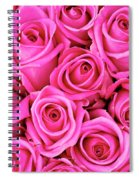 Fuschia Colored Roses Spiral Notebook