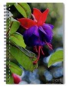 Fuschia Spiral Notebook