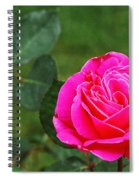 Fuschia Rose Spiral Notebook