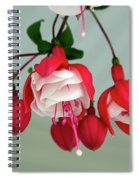 Fuschia Spiral Notebook