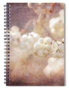 Fusion Art 21 Spiral Notebook