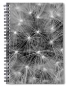 Fuzzy - Black And White Spiral Notebook