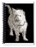 Fuzzy Molly Spiral Notebook