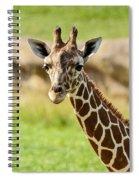G Is For Giraffe Spiral Notebook