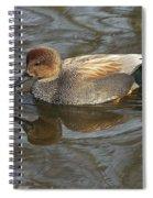 Gadwall  Spiral Notebook
