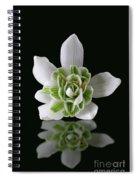 Galanthus Nivalis Flore Pleno Spiral Notebook