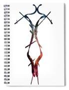 Galaxy Figure Spiral Notebook