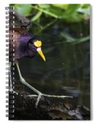 Gallinule Spiral Notebook