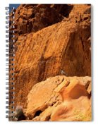 Gambels Quail In Profile Valley Of Fire Spiral Notebook