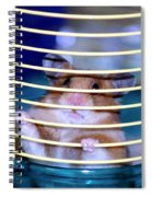 Gangster Hamster Spiral Notebook