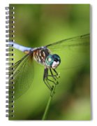 Garden Dragonfly Spiral Notebook