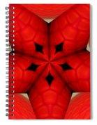 Garden Glass Orb Kaleidoscope Abstract Spiral Notebook