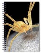 Garden Guard Spiral Notebook