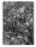 Garden Hydrangeas In Grayscale Spiral Notebook