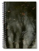Garden In Winter. Spiral Notebook