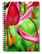 Garden Jewels 1 Spiral Notebook