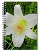 Garden Lily Posterized Background Spiral Notebook