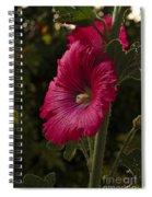 Garden Mayflower Spiral Notebook