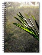 Garden Of Eden Rain Spiral Notebook