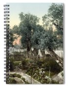 Garden Of Gethsemane Spiral Notebook