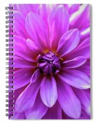 Garden Pink Spiral Notebook