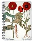 Garden Poppy Spiral Notebook