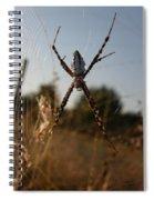 Garden Spider Spiral Notebook