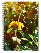 Garden Yellow Spiral Notebook