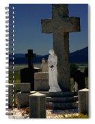 Gardians Of Souls Spiral Notebook