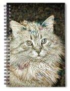 Garfield Spiral Notebook