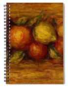 Garland Of Fruit And Flowers 1915 Spiral Notebook
