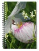 Garnished Showy Lady Slipper Spiral Notebook