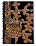 Indecipherable Spiral Notebook