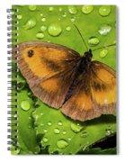 Gatekeeper Butterfly After The Rain. Spiral Notebook